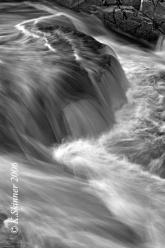 randolphs-leap-elephants-foot-falls